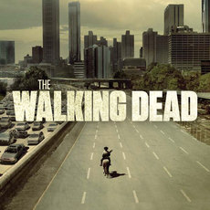Poster for The Walking Dead Season One